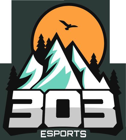 303 Esports  Team