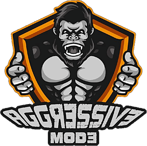 Aggressive Mode CS:GO Team