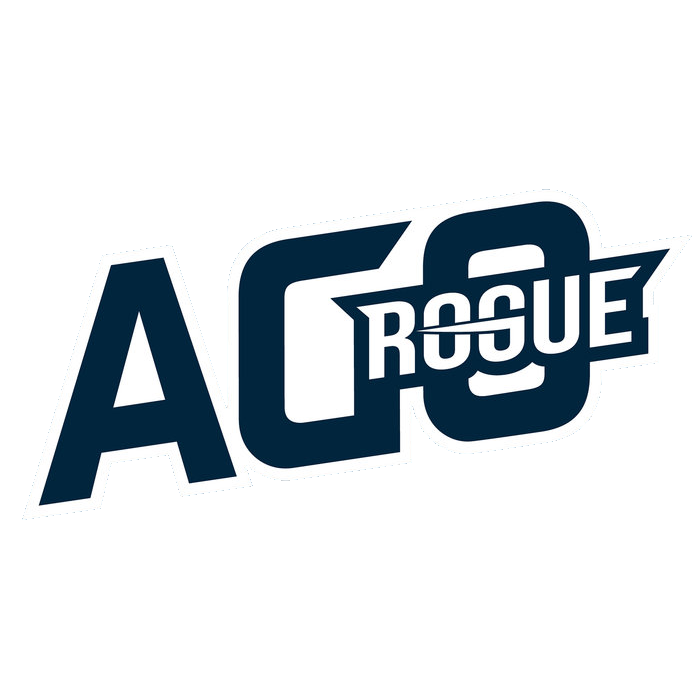 AGO ROGUE League of Legends Team