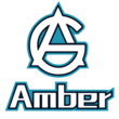 Amber Gaming Dota 2 Team