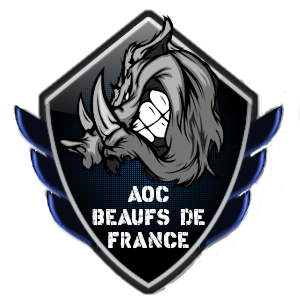 AOC Beaufs de France Dota 2 Team