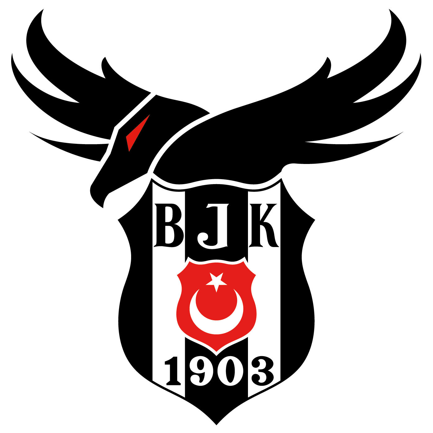 Besiktas  Team