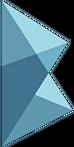 Bitfrost CS:GO Team