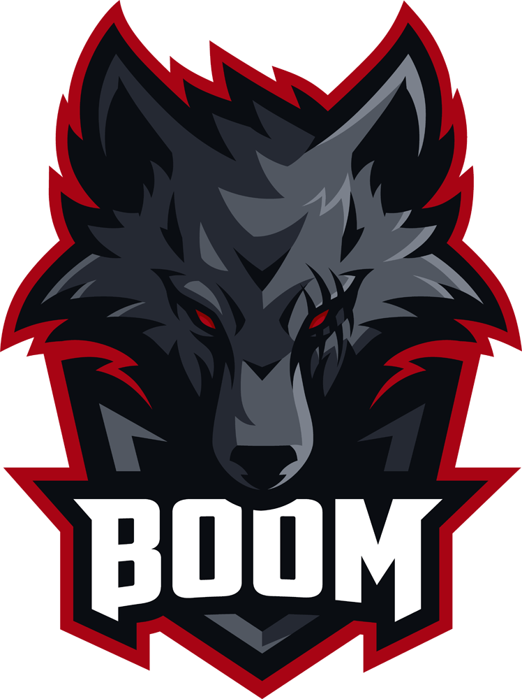 BOOM CS:GO Team