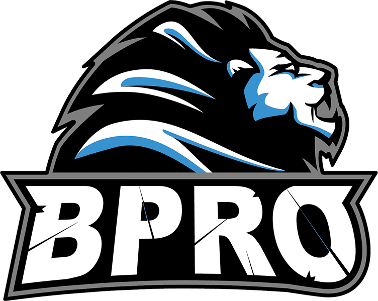 BPro Gaming  Team