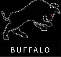 Buffalo Team Dota 2 Team