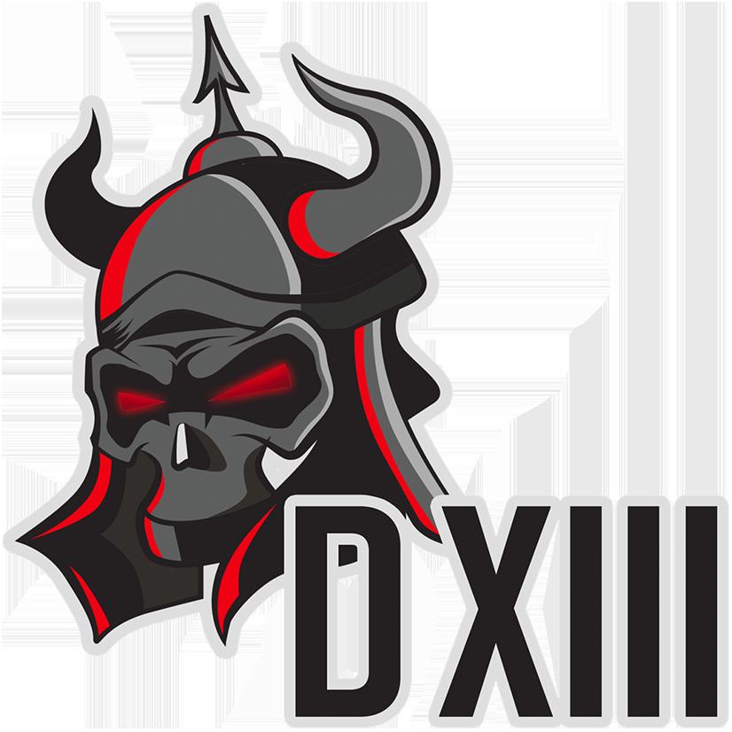D13  Team