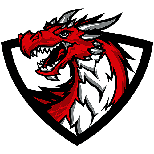 Dracarys CS:GO Team