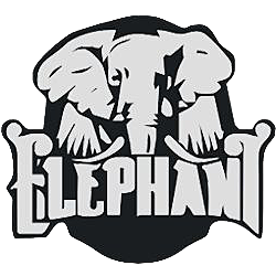 Elephant Dota 2 Team