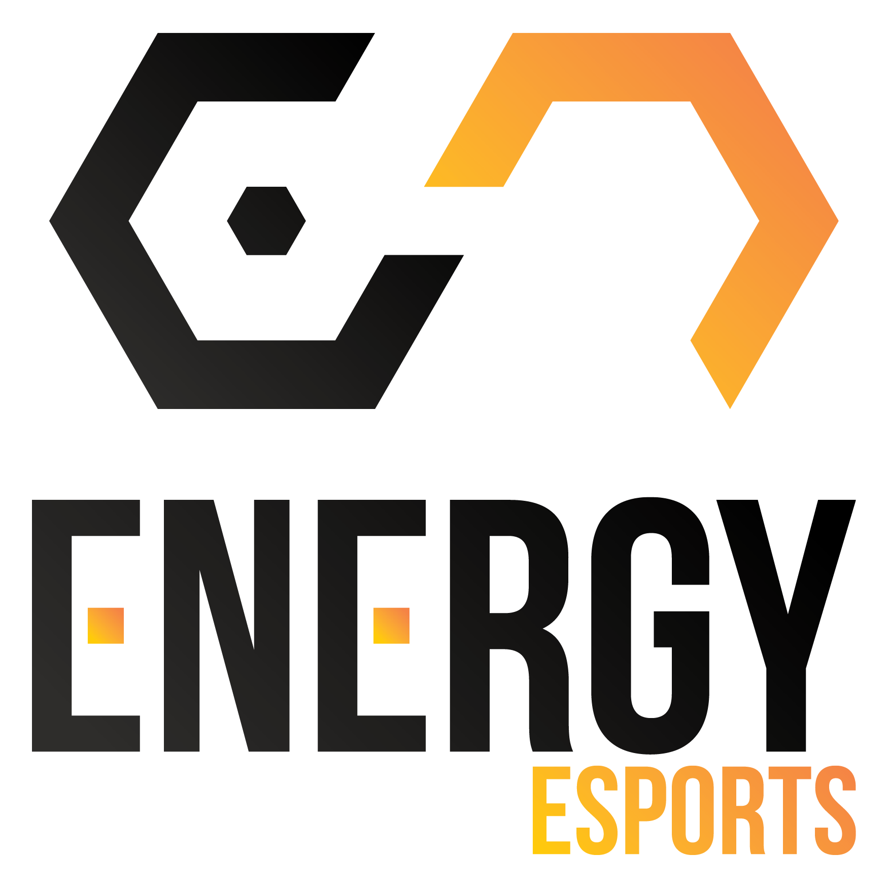 Energy Esports Dota 2 Team