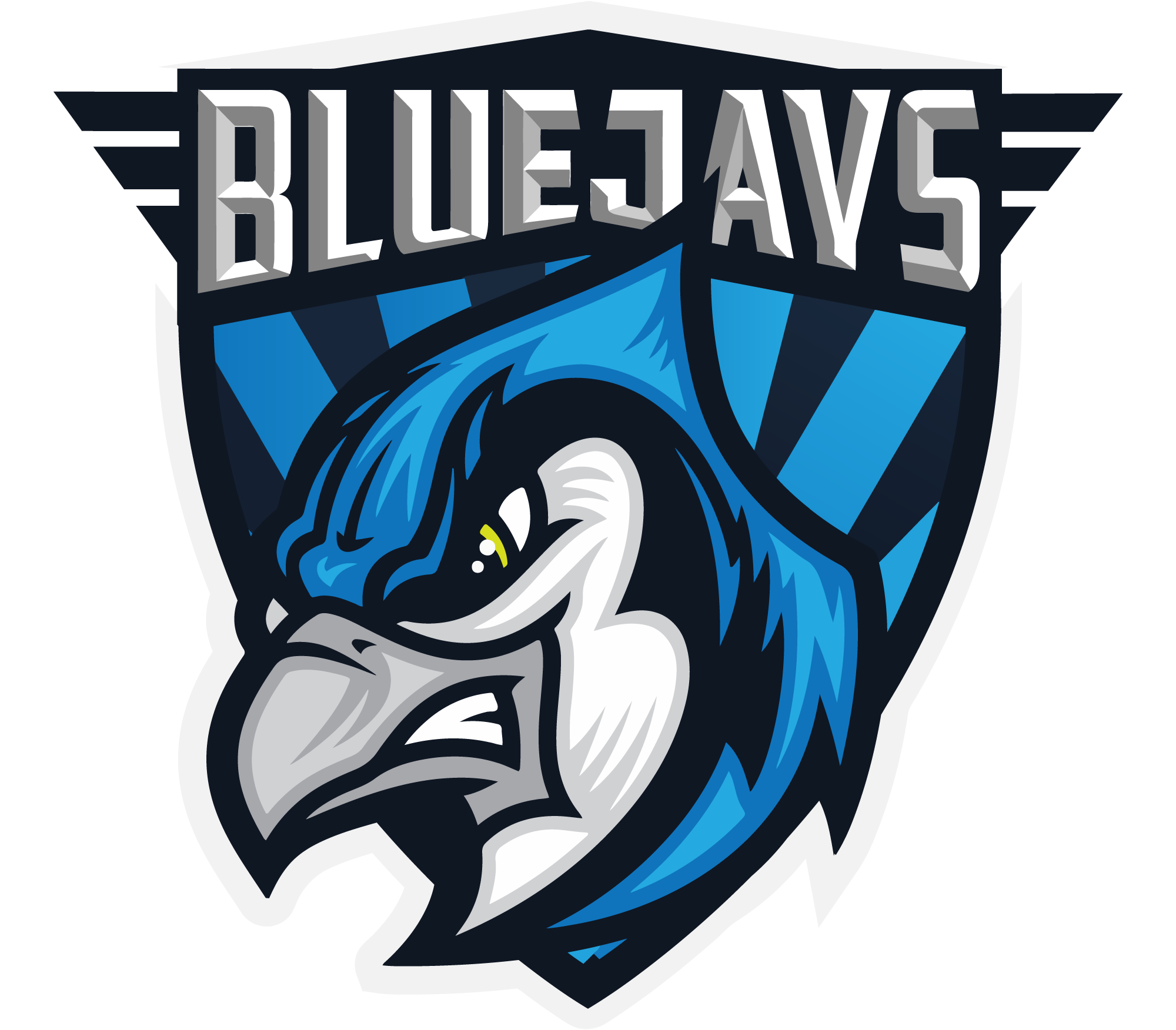 ex-BLUEJAYS CS:GO Team