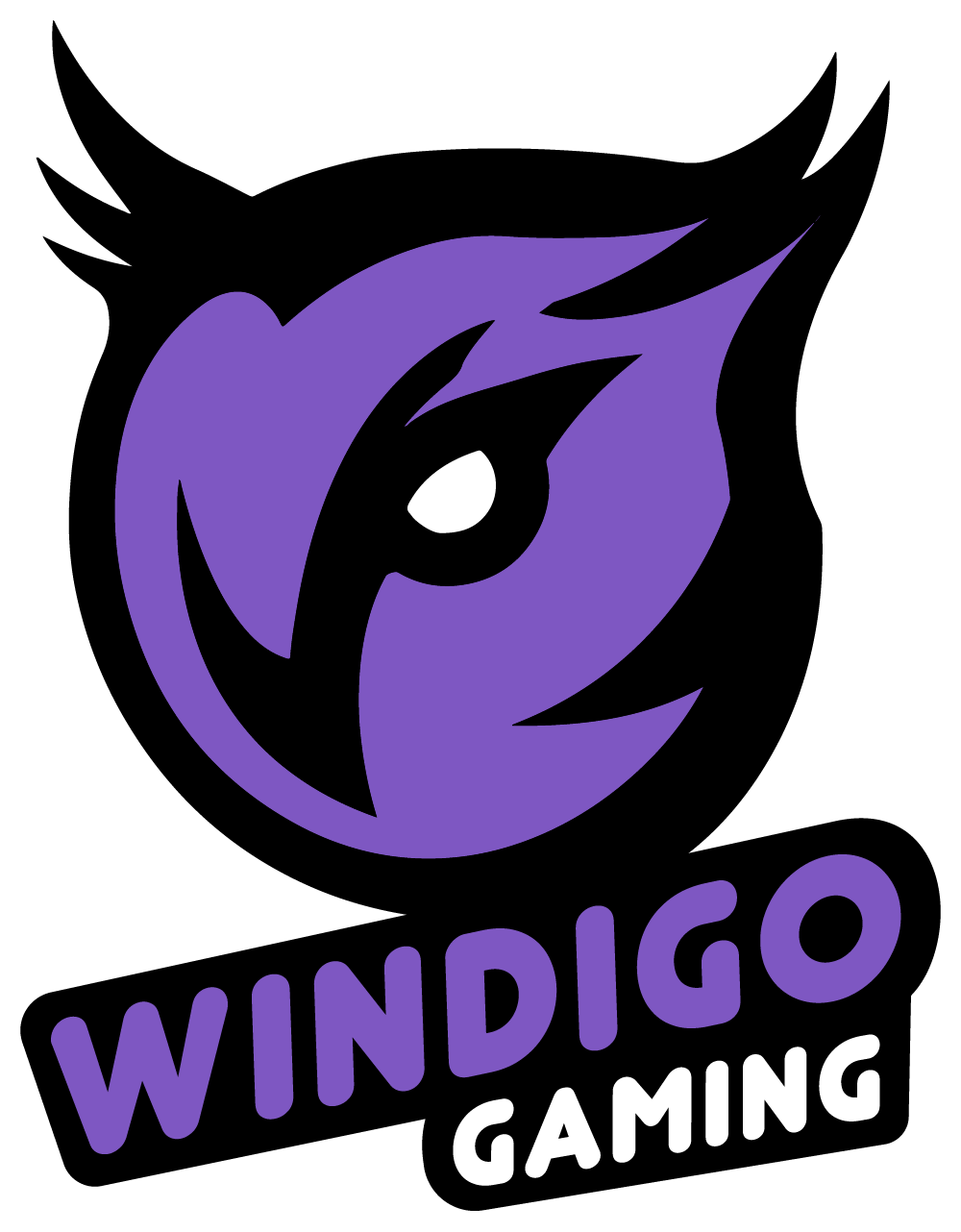 ex-Windigo CS:GO Team
