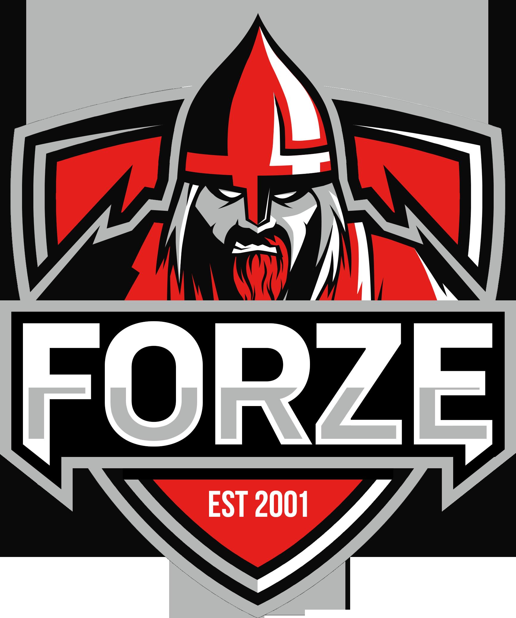 forZe CS:GO Team