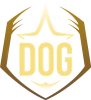 Funny Yellow Dog League of Legends Team