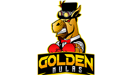 Golden Mulas Dota 2 Team