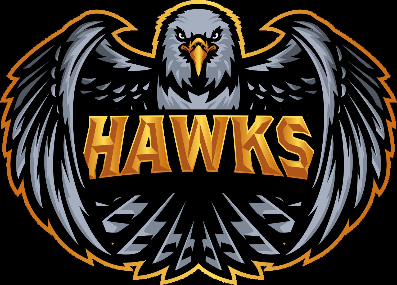 Hawks CS:GO Team