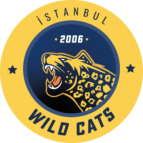 Istanbul Wildcats League of Legends Team