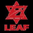 Leaf Dota 2 Team