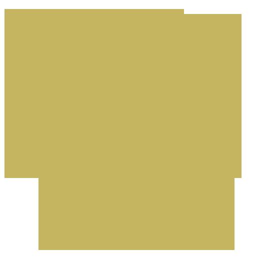 Lionz CS:GO Team