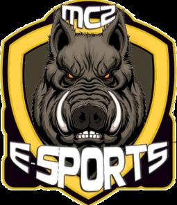 MCZ E-sports Dota 2 Team