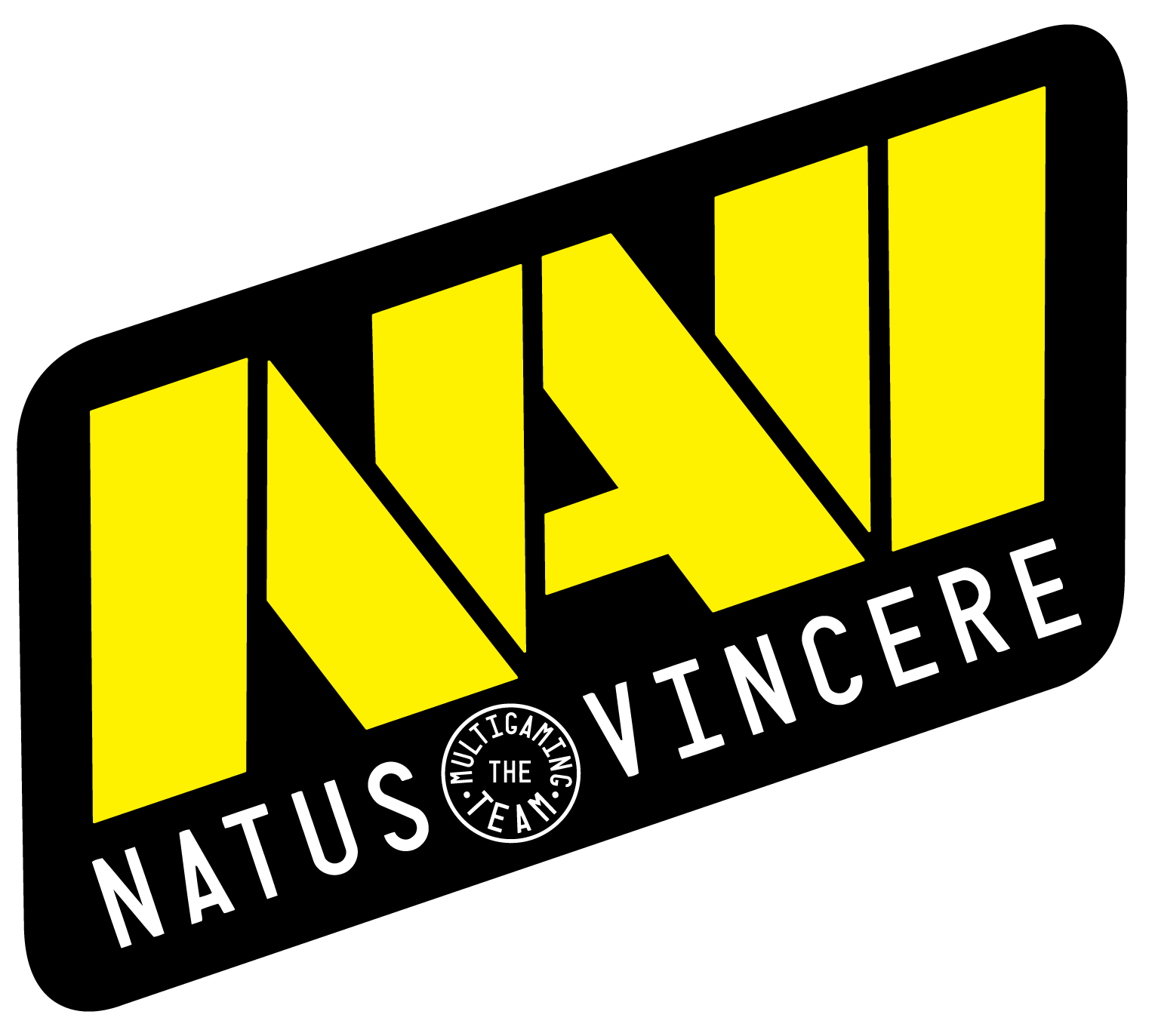 Natus Vincere CS:GO Team