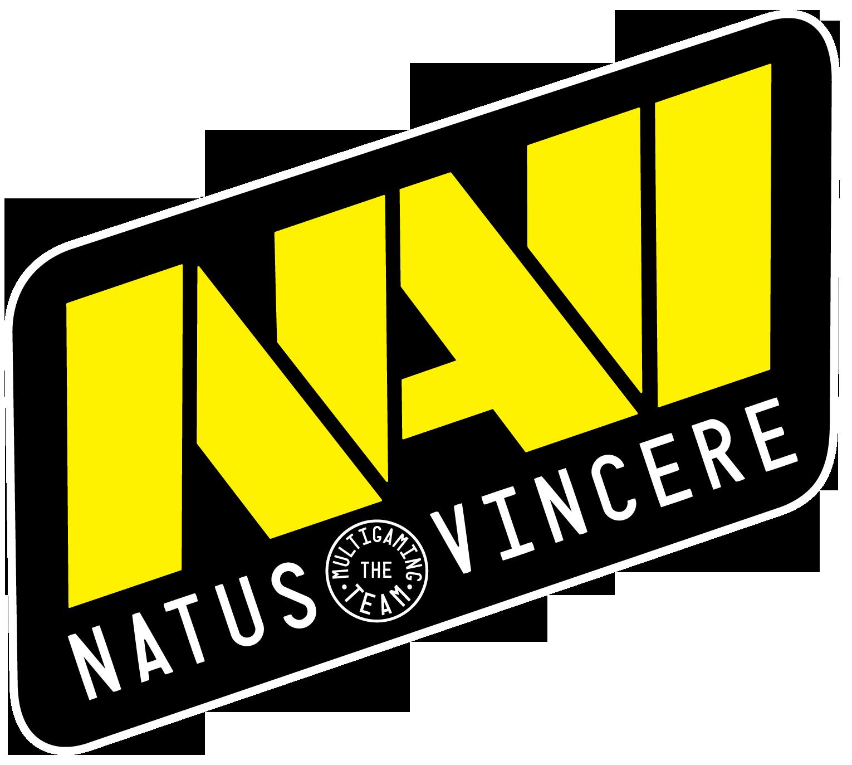 Natus Vincere Dota 2 Team