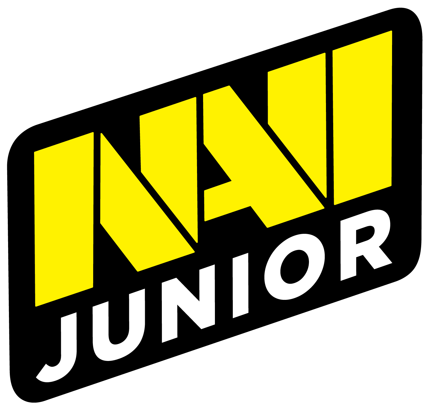 Natus Vincere Junior CS:GO Team
