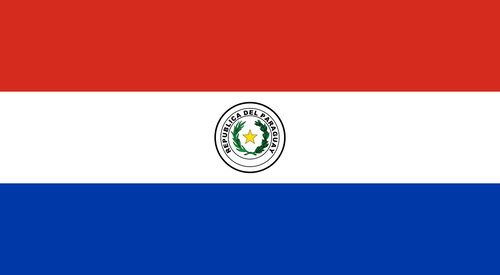 Paraguay Overwatch Team