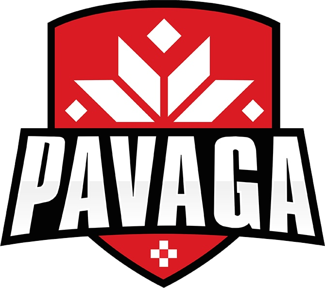 PAVAGA Dota 2 Team