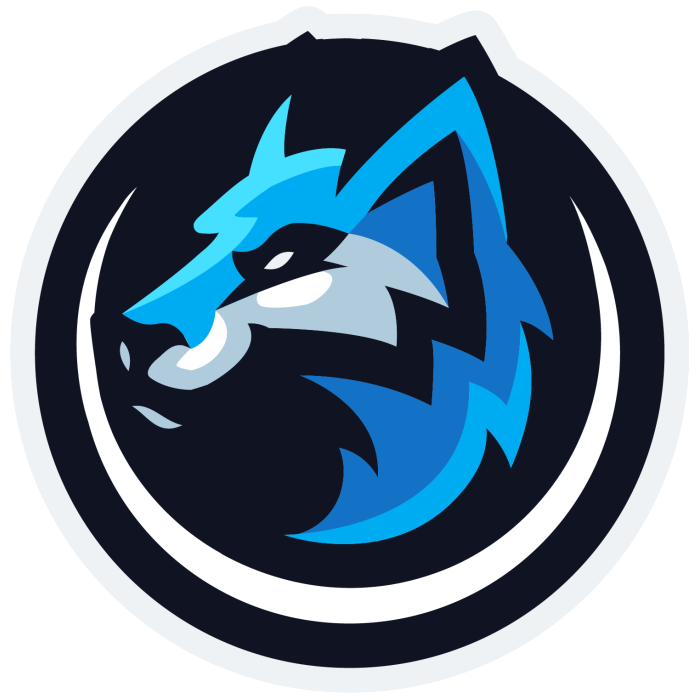 Polar Ace CS:GO Team