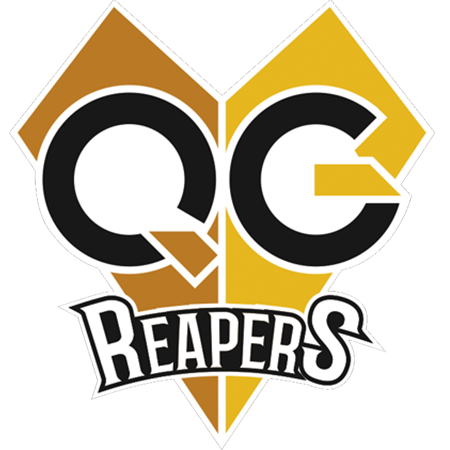 QG Reapers League of Legends Team