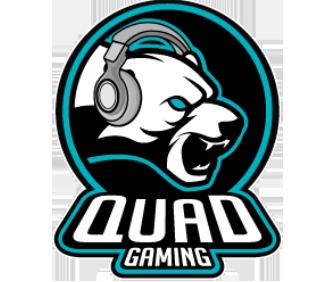 Quad CS:GO Team