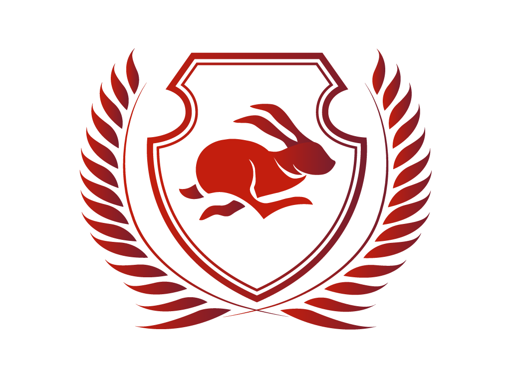 Red Feet CS:GO Team