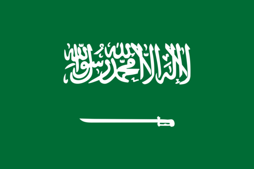 Saudi Arabia Overwatch Team