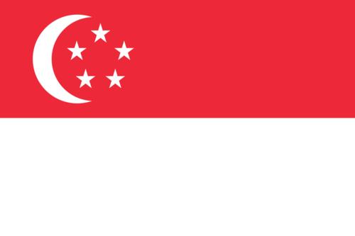Singapore Overwatch Team