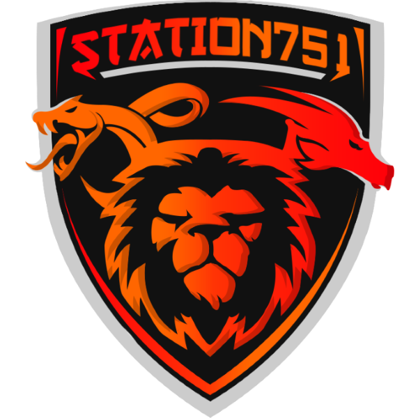 Station-751 CS:GO Team