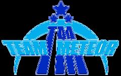 Team Meteor Dota 2 Team