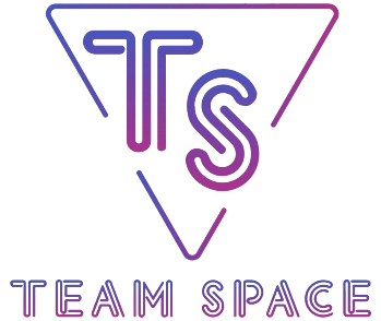 Team.Space Dota 2 Team