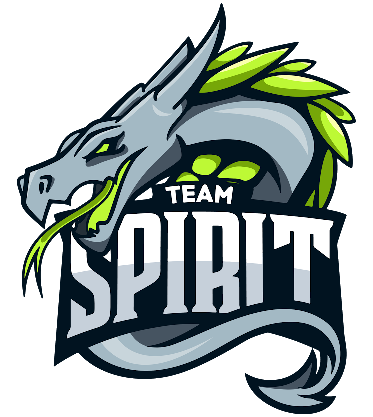Team Spirit CS:GO Team