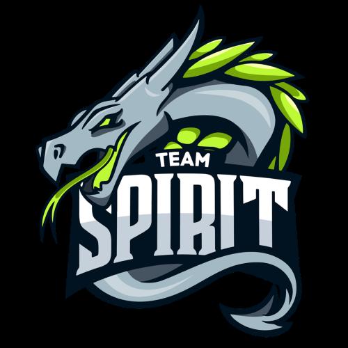Team Spirit Dota 2 Team