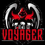 Team Voyager Dota 2 Team