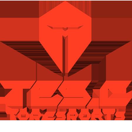 Top Esports Challenger  Team