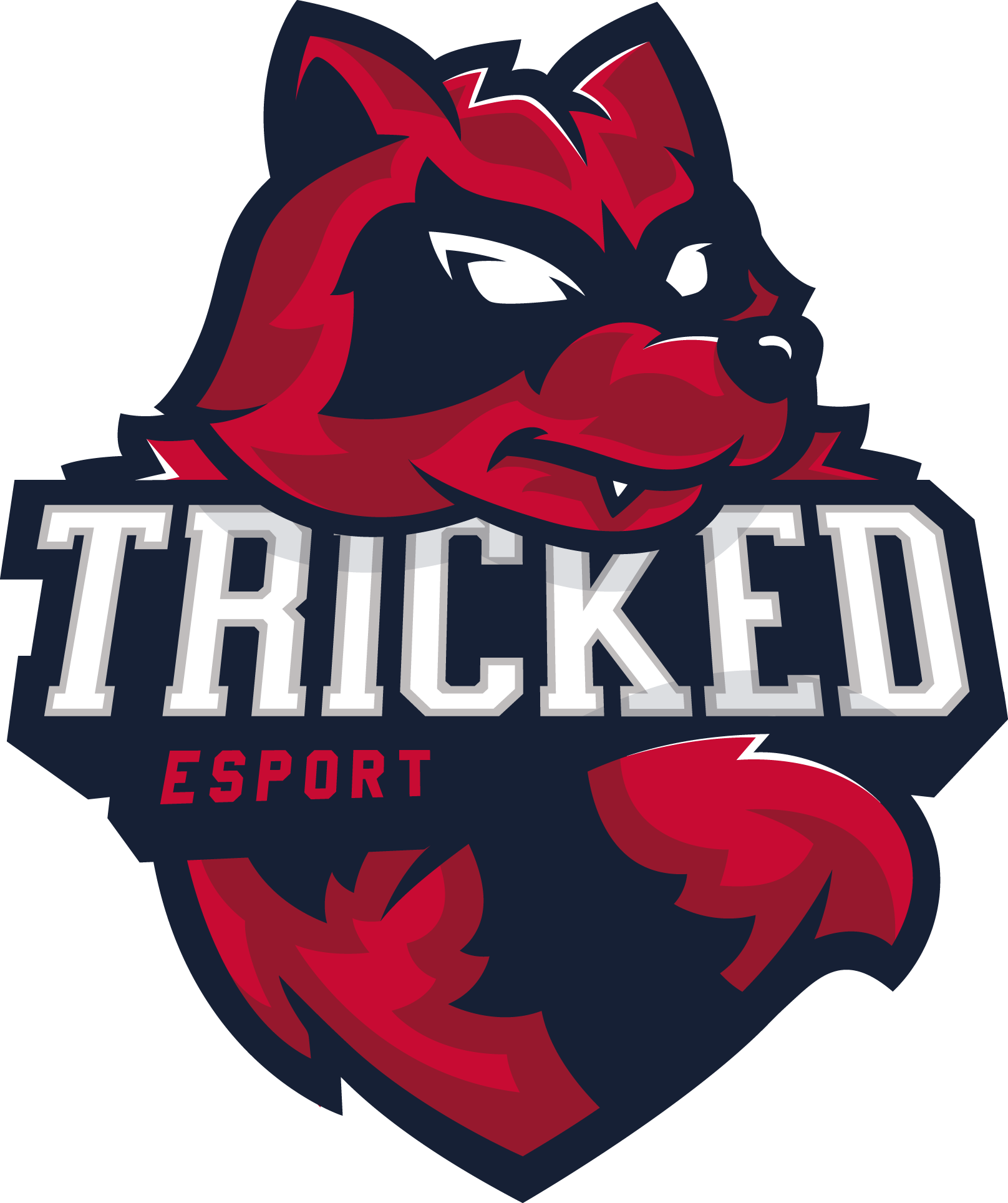 Tricked Esport CS:GO Team