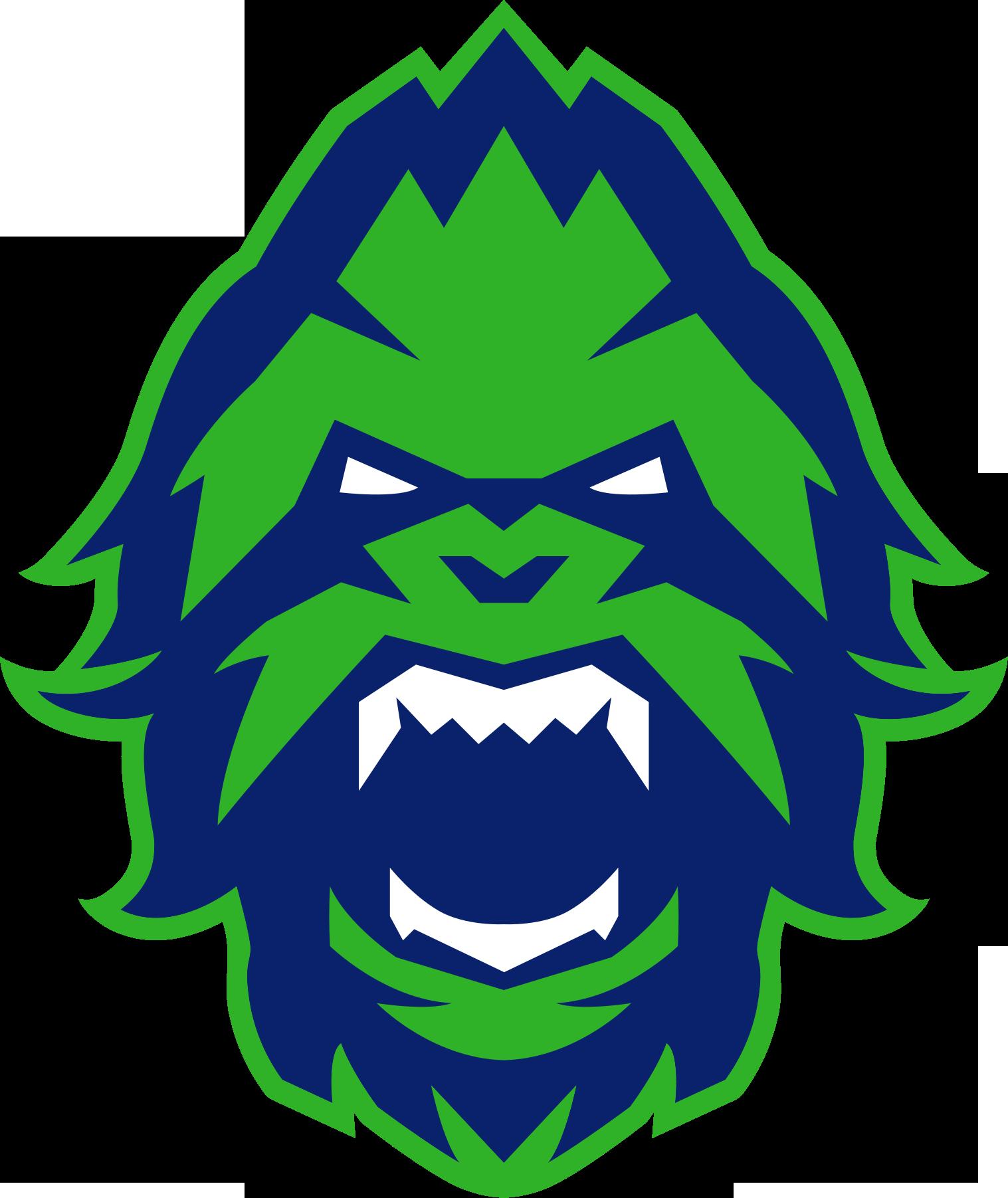 Vancouver Titans  Team