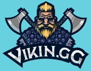 ViKin.gg  Team