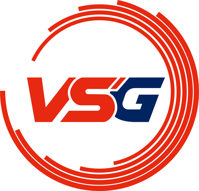 VSG League of Legends Team
