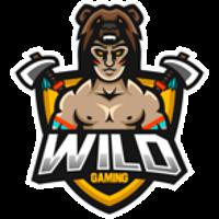 Wild CS:GO Team