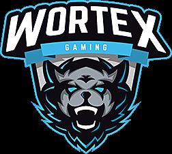 WORTEX CS:GO Team