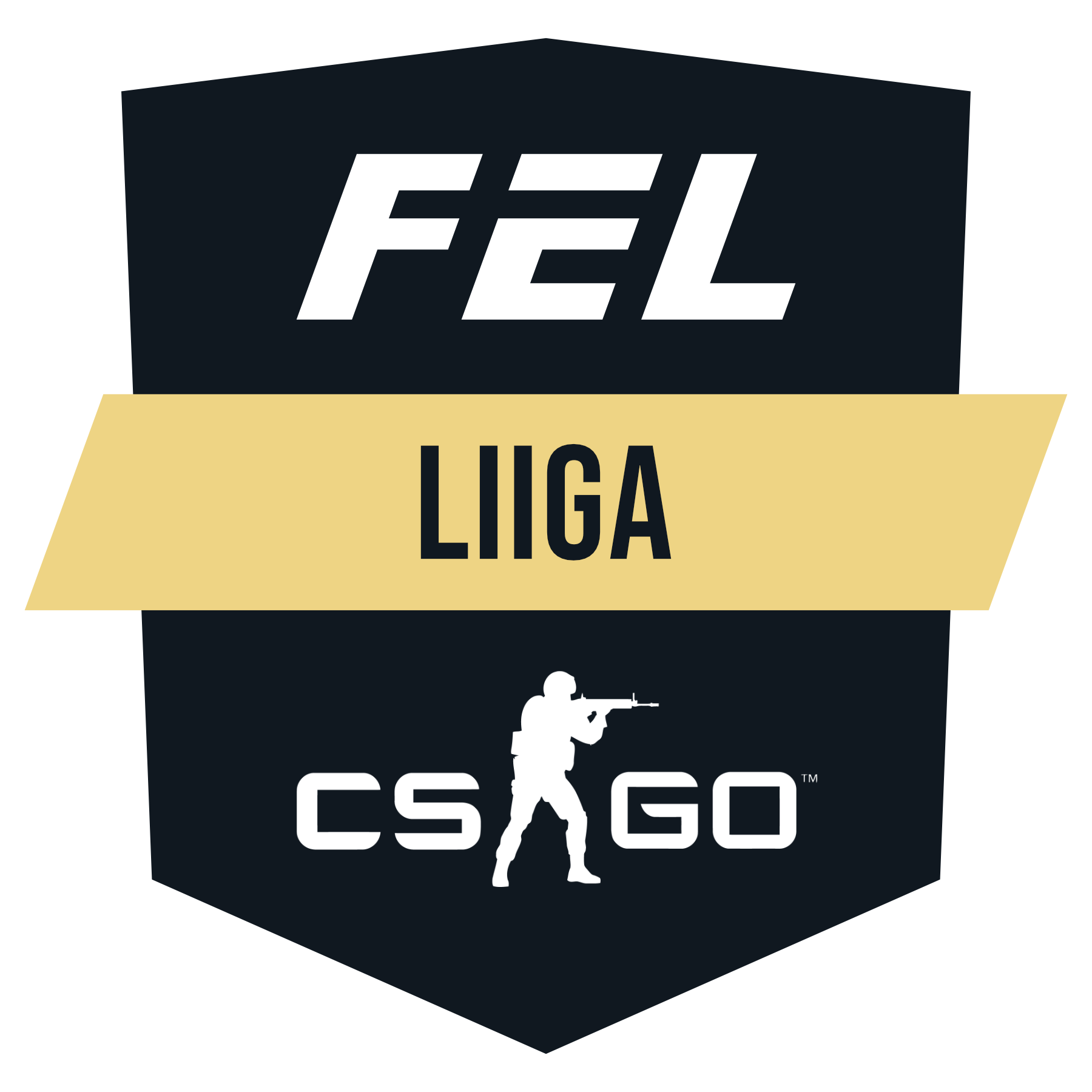 Finnish Esports League CS:GO Series