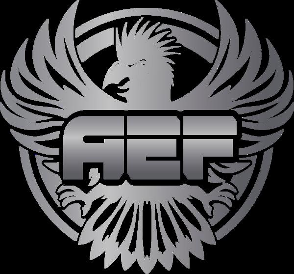 AEF League Dota 2 Series